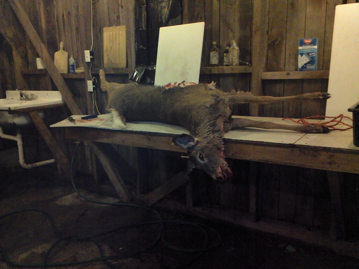 Deer sausages-1120191808b.jpg