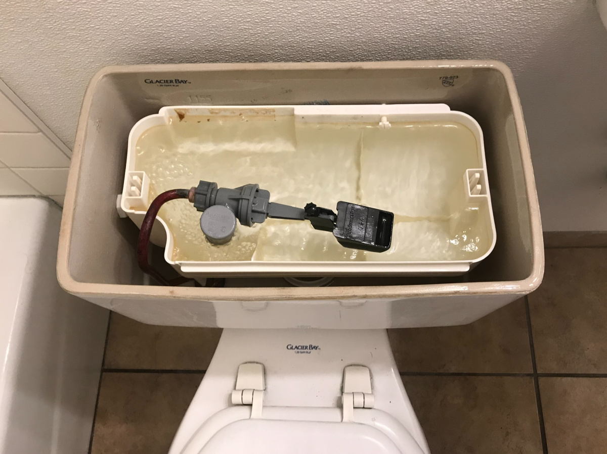 new kind of junk installed in a toilet-eae42a56-37c7-432c-bb00-df5fdf7e4d94.jpg