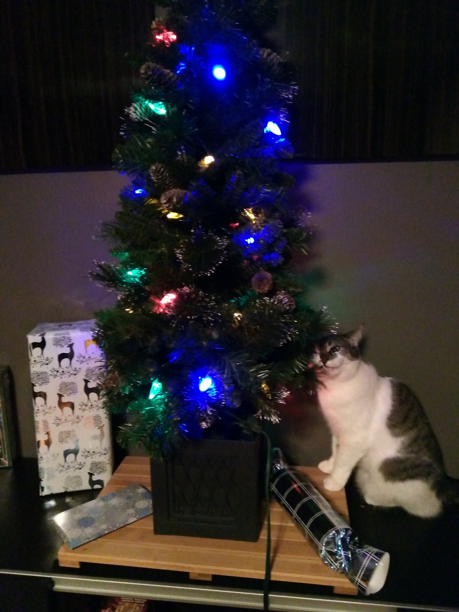 Merry Christmas-eating-branches.jpg