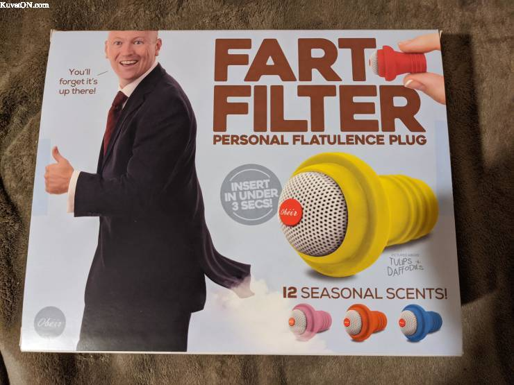 Pressure test boiler intake/exhaust?-fart-filter.jpg