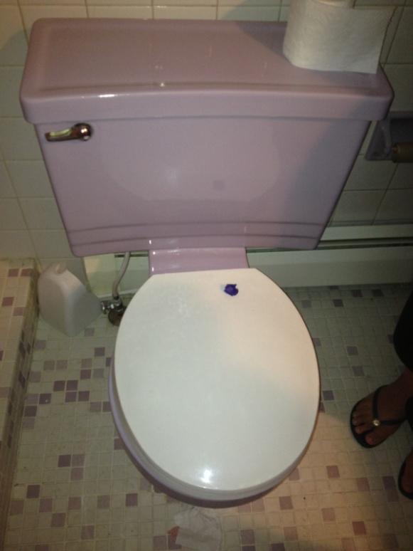 Rheem Toilet Plumbing Zone Professional Plumbers Forum